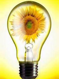 Программа энергосбережения 2020