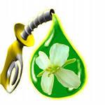 Перспективы биоэнергетики