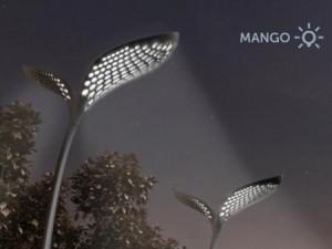 Экологические фонари Манго