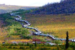 Транс-Аляскинский трубопровод