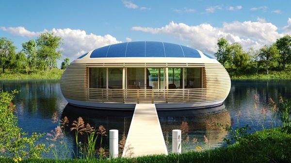 Гнездо на воде