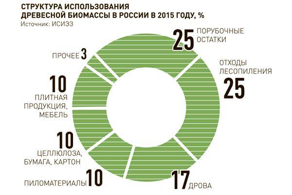 Структура использования древесной биомассы в России