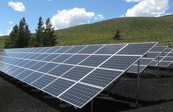 использовать солнечную энергию в фотосинтезе