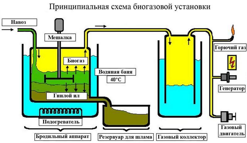 Биотопливо: сырье и технологии