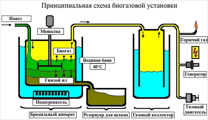 Производство биогаза из навоза: суть метода