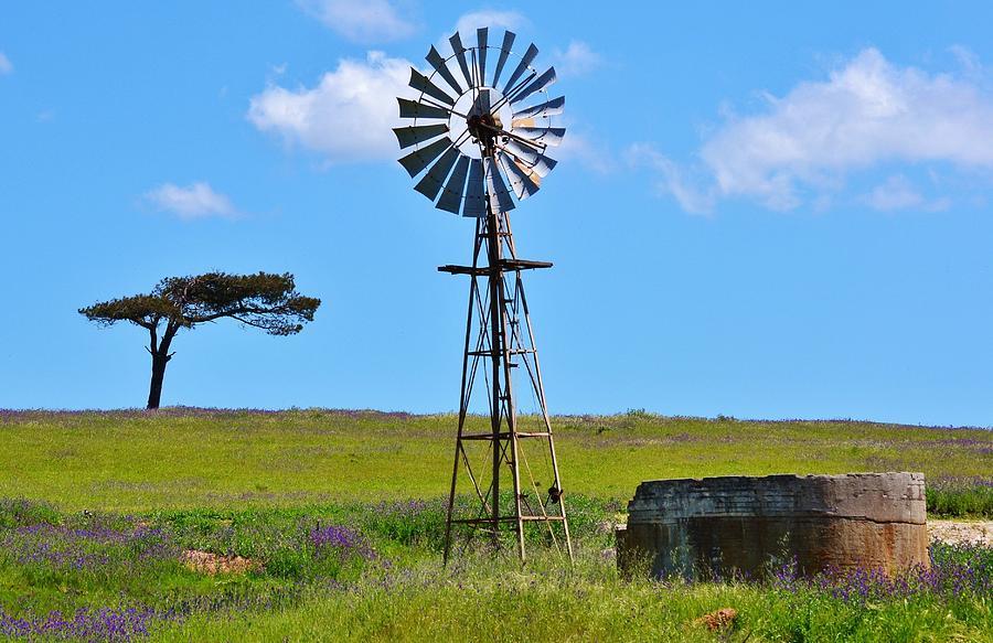 Из каких материалов можно собрать самодельные ветряные насосы для воды