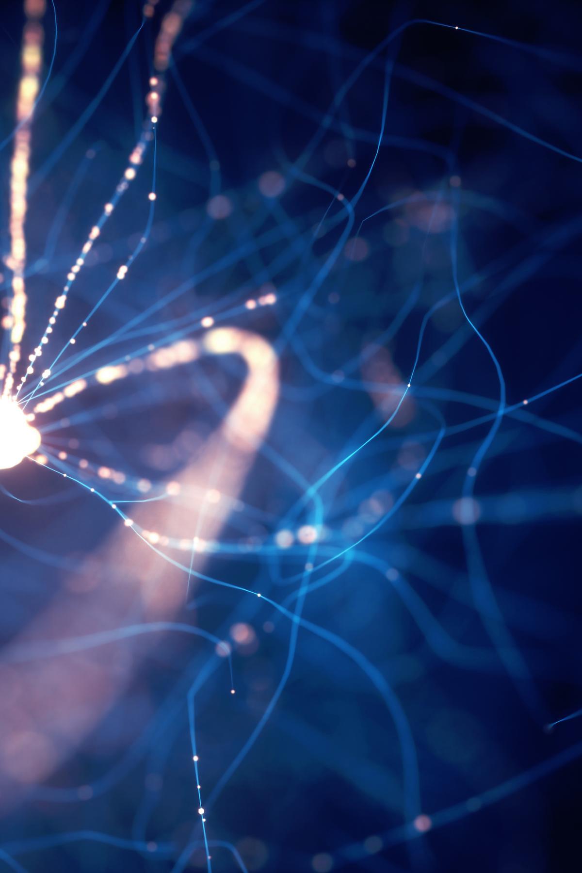Бывает ли электричество в живых организмах