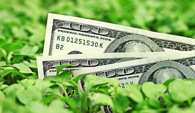 Зеленые облигации: действительность и перспективы